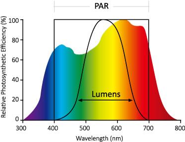 horti_LED_PAR_wavelength_range