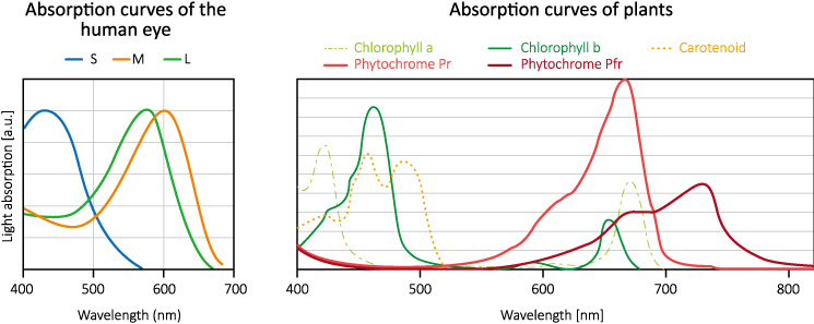 horti_LED_absorption-curves